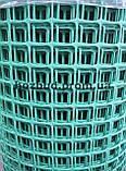 Садовая сетка пластиковая (решетка) 0.8*25м. ячейка 25*25, фото 2