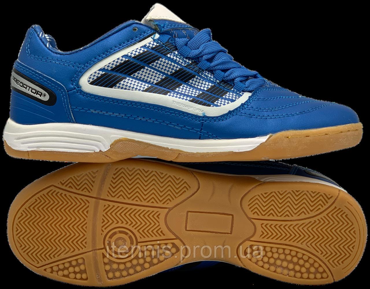 Футзалки Adidas Predator (р. 36-40) Синий