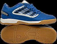 Футзалки Adidas Predator (р. 36-40) Синий, фото 1