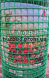 Садова сітка пластикова (решітка) 1*20м. осередок 20*20, фото 2