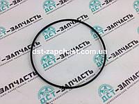 Уплотнитель гильзы цилиндра для двигателя Cummins 6C, 6CT, 6CTA 3907177/391773/J907177
