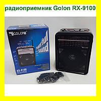Портативный радиоприемник Golon RX-9100!Товар дня, фото 1