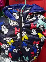 Детская демисезонная куртка Микки, на 1-4 года, темно-синий
