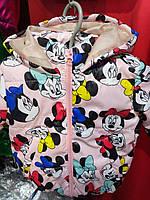 Детская демисезонная куртка Микки, на 1-4 года, фрезовый