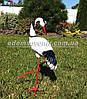 Садовая фигура Журавушка на металлических лапах, фото 3