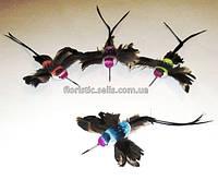 Колибри искусственные