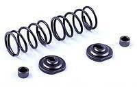 Клапанный механизм комплект (пружины, тарелки, сальн.клап.) на 2 кл.  177F