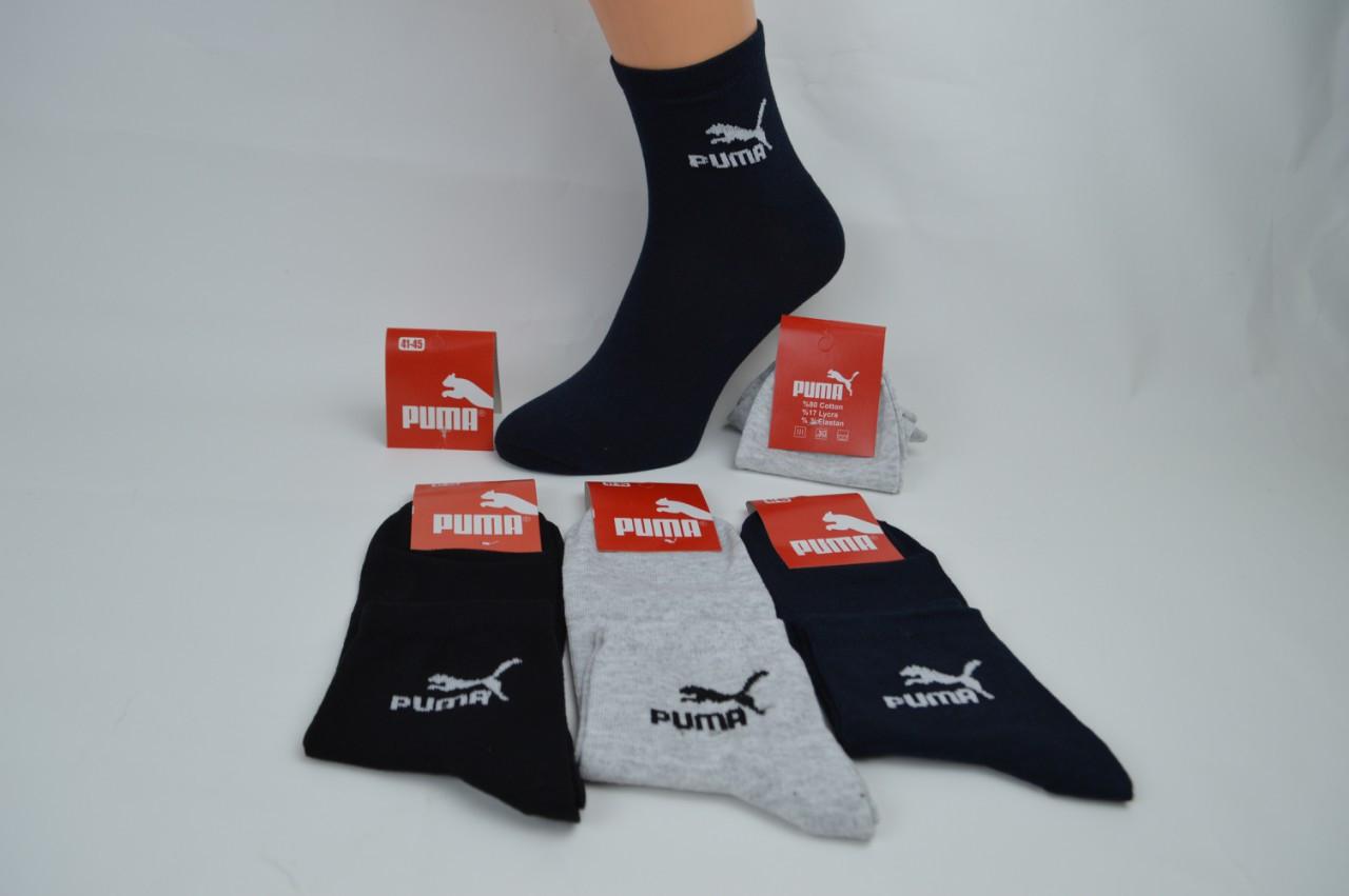 Носки мужские Турция -спортивные средней высоты коттон размер 41-45