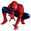 Нарукавники Bestway 98001 «Человек-паук», 23 х 15 см, фото 7