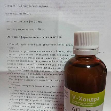V-Хондра - способствует регенерации, восстановлению хрящевой ткани. 40 суточных доз (50мл), фото 2