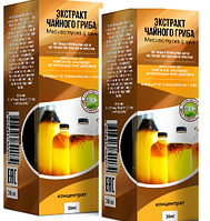 Экстракт чайного гриба от паразитов и гельминтов (концентрат), экстракт чайного гриба купить #V/N