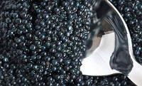 Чёрная икра веслонос 500 грамм