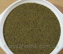 Люцерна магниченная (очищена) від 25 кг насіння