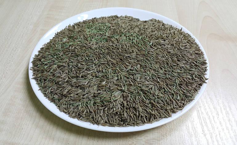 Тмин обыкновенный 100г, фото 2
