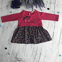 Платье на девочку Breeze 12-б. Размер 68 см, 74 см, 80 см,  92 см