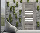 Двери Омис Рино 06 дуб Денвер, фото 2