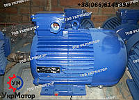 Электродвигатель 3 кВт 1000 об/мин. АИР112МA6 (електродвигун 4АМ112МA6) Украина, Полтава