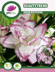 Лилия восточная махровая Beautytrend
