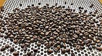 Кофе 100% Арабика Brazil Cerrafine 1кг