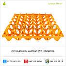 Лоток для яиц на 30 шт Турция (ЛТ-1), фото 2