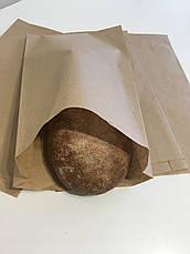 Пакет для булочек, пончиков, хачапури, выпечки 180мм*50мм*340мм. Заказ 1000 шт., фото 2
