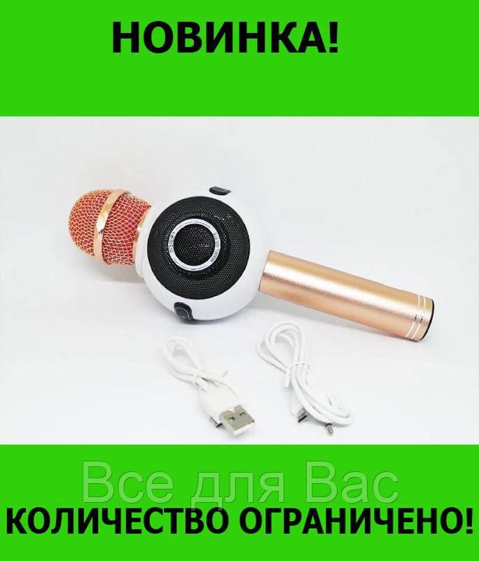 Микрофон DM Karaoke WS 878!Розница и Опт