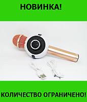 Микрофон DM Karaoke WS 878!Розница и Опт, фото 1