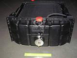 Радиатор вод. охлажд.(45-1301.006-А) ЮМЗ с дв.Д65 (4-х рядн.) , фото 4