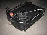 Радиатор вод. охлажд.(45-1301.006-А) ЮМЗ с дв.Д65 (4-х рядн.) , фото 6