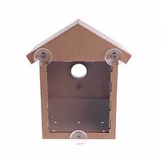 Скворечник с прозрачной стенкой для просмотра, домик кормушка для птиц, фото 2