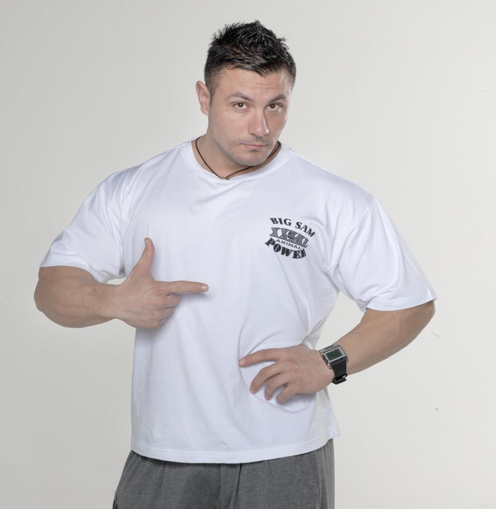 Мужская свободная футболка BIG SAM 2720