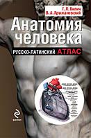 Анатомия человека: русско-латинский атлас. Билич Г.Л., Крыжановский В.А. Анатомия человека: русско-л