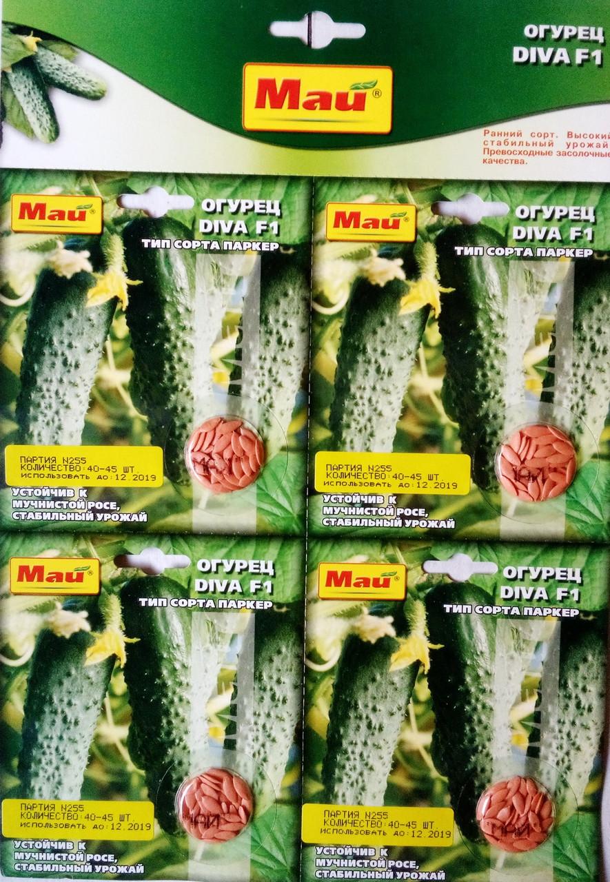 Семена  огурца сорт Дива F1