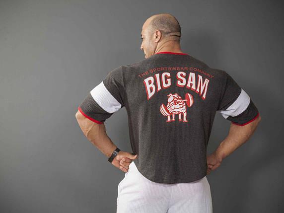 Футболка Big Sam 2878 рукав 3/4, фото 2
