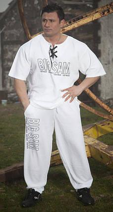 Футболка Big Sam 3131, фото 2