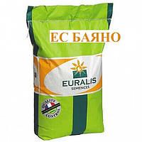 Семена подсолнечника Баяно (Евралис)