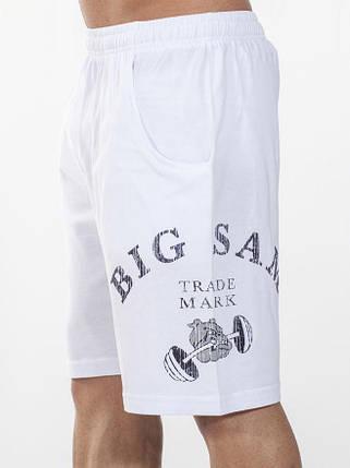 Шорты спортивные Big Sam 1431, фото 2