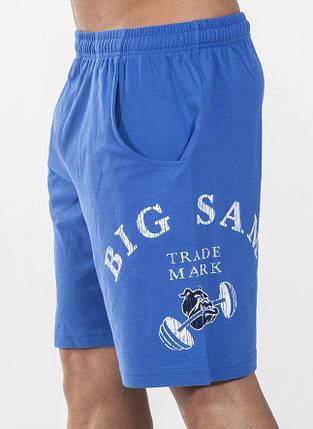 Шорты спортивные Big Sam 1433, фото 2