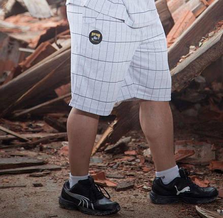 Шорты повседневные Big Sam 1403, фото 2