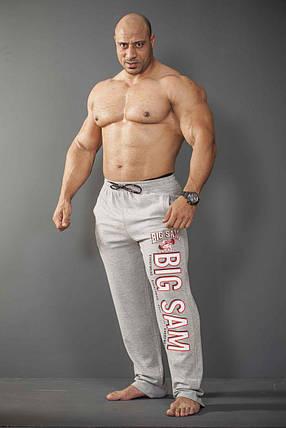 Штаны спортивные Big Sam 0810, фото 2