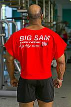 Топ-футболка Big Sam 3106, фото 3