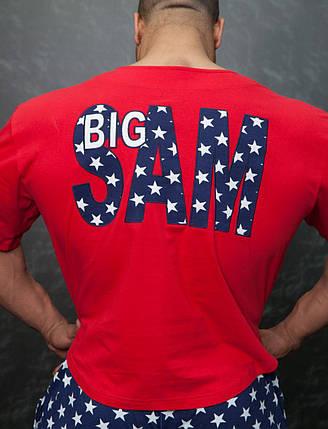 Топ-футболка Big Sam 3195, фото 2