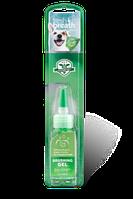 Гель д/зубов Fresh Breeth Brushing Gel, фото 1