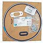 Комплект уплотнения камеры сгорания Vaillant ecoTEC - 0020025929, фото 3
