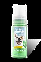 Пена д/зубов Oral Care Foam, фото 1