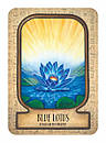 Auset Egyptian Oracle Cards, фото 3