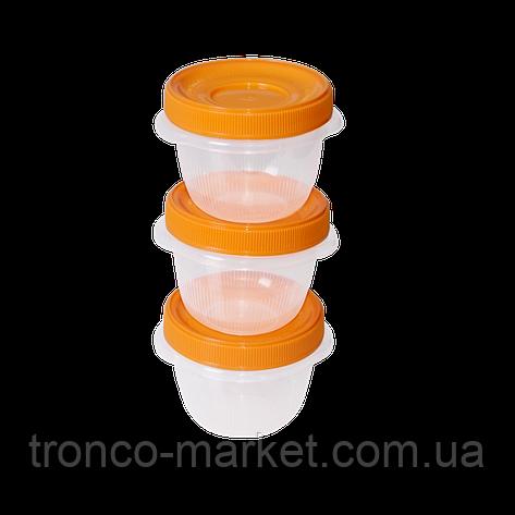 Набор контейнеров Омега 0,285 л  для пищевых продуктов - 3шт, фото 2