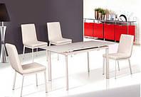 Стол обеденный стеклянный  (раскладной) ТВ077