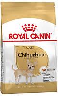 Royal Canin Chihuahua Adult, 1,5 кг