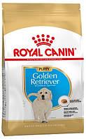 Royal Canin Golden Retriever Puppy, 12 кг